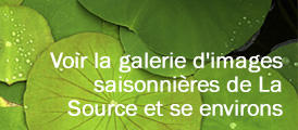 gallerysidebar-french