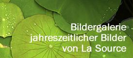 gallerysidebar-german